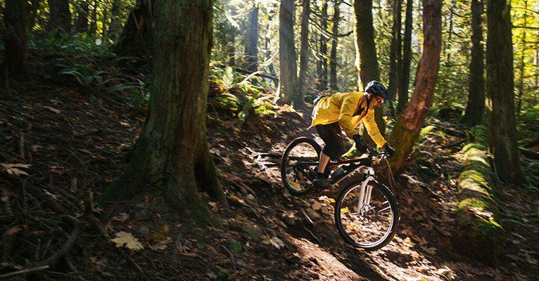 Mann fährt mit dem Mountainbike durch den Wald