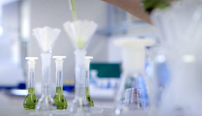 Reagenzgläser werden mit Flüssigkeiten befüllt